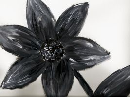 black and white flower by derpykittykat