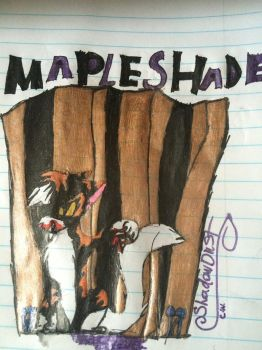 MapleShade! by Ask-ShadowDust22
