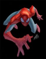 spidey 66 by fco