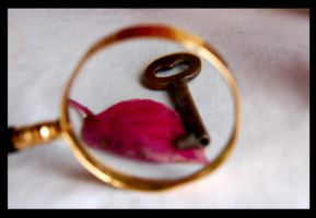 This is the key by PauloOliveira