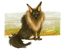 brown  hyena by NicoleWest