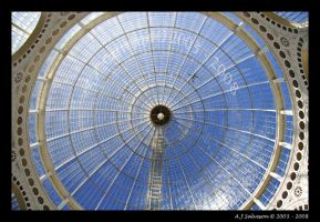 Syon Park II by andy-j-s