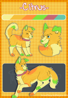Citrus the Husky Mix by MattsyKun