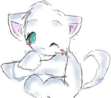 Cute kitty by Poofle
