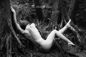 roots by Michelle-Fennel