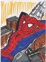 Spider Man Sketch Card by PlummyPress