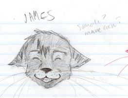James by funaaba