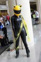 Megacon 2013 100 by CosplayCousins