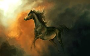 War horse by Elsouille