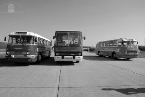 Ikarus 255 between two Ikarus 55's in Tokol, 2013 by morpheus880223