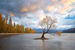 Wanaka Sunrise by StevenDavisPhoto