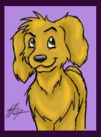 -Golden Pup- by higesblue
