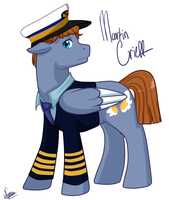 But I'm the CAPTAIN! by Midoromi