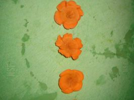 Carrot Flowers by ShadeDK
