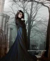 In search of.... by vampirekingdom