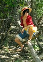 Monkey D. Luffy - Sailing Again by xXBrokenMemoriesXx