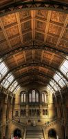 Nice Ceiling by wreck-photography