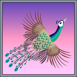 Peacock in flight by kawgraphics