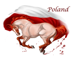 Horse Hetalia:  Poland by MUSONART