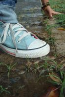 converse by DonaTears