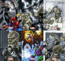 Marvel Heroes and Villains 21 by RichardCox