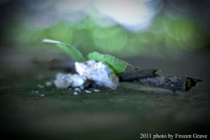 Natural Composition n_2 by Frozen-Grave