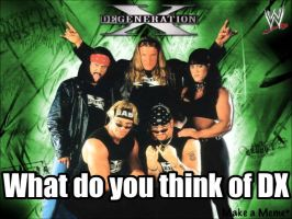 What do you think of DX by WWEfan45