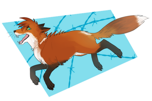 Johnny the Foxstar by Mad-March