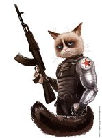 Captain America:The Winter Soldier- Grumpy Soldier by maXKennedy