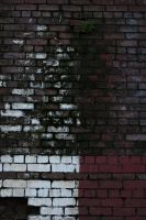 Stock 0096 - Brick Texture by EverythingIsInStock