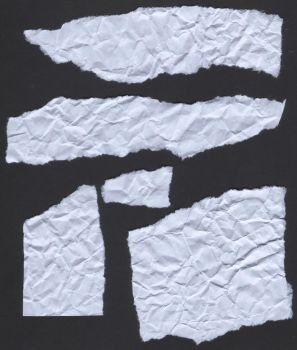 Torn Paper Pieces by StooStock