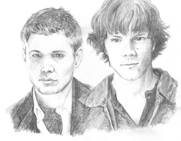 Sam and Dean Winchester by silver-dog