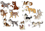 Adopt-a-dog-cat //8 points// by Fudge-Adopts