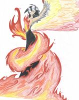 Fire to Phoenix by HavocWraith