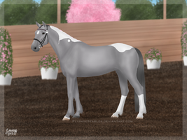 Soo Yun: Lead Mare Halter by FamousFox