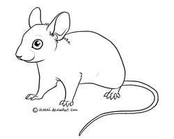 Free lines - Mouse by Avanii