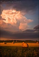 The Gathering Storm by Sarah--Lynne