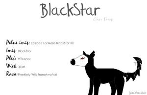 BlackStar CharSheet xP by BlackSuicidee