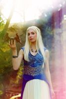 Daenerys - Colorplay by Lena-Lara