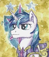 Shining Armor by The-Wizard-of-Art