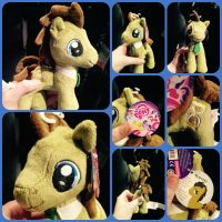 ( MLP ) Doctor Whooves Aurora 7 Inch Plushie by KrazyKari