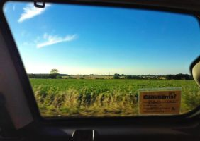 The View from the Car Window by GraceDoragon