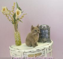 Lucy -  ooak kitten by Mary Anderson by PawsofLoveMinis