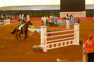 Showjumping LIII by Fobtrix-Stock