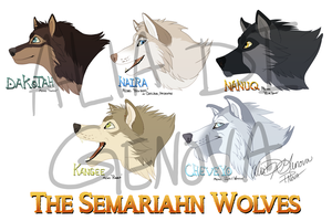 The Semariahn Wolves Project by Kairi292