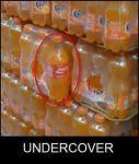 Coca-Cola Undercover..... by dipperpineslover9689