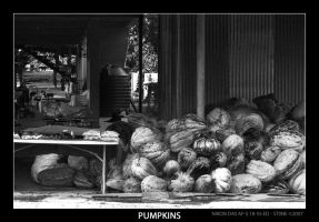 Pumpkins by stonemx