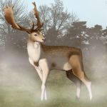 Stag Speedy by kovah