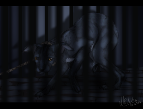 Cage Of Shadows (ToY) by BlackFireDeath