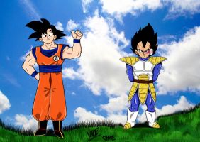 Goku and Vegeta by Chazzwin